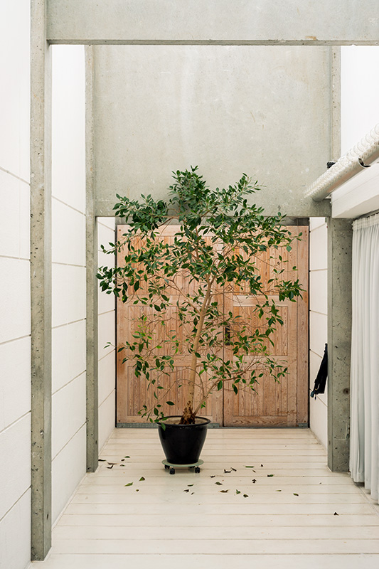 A doorway blocked with a potted plant on a wheeled base at Bagsværd Kirke, Copenhagen, designed by Jørn Utzon