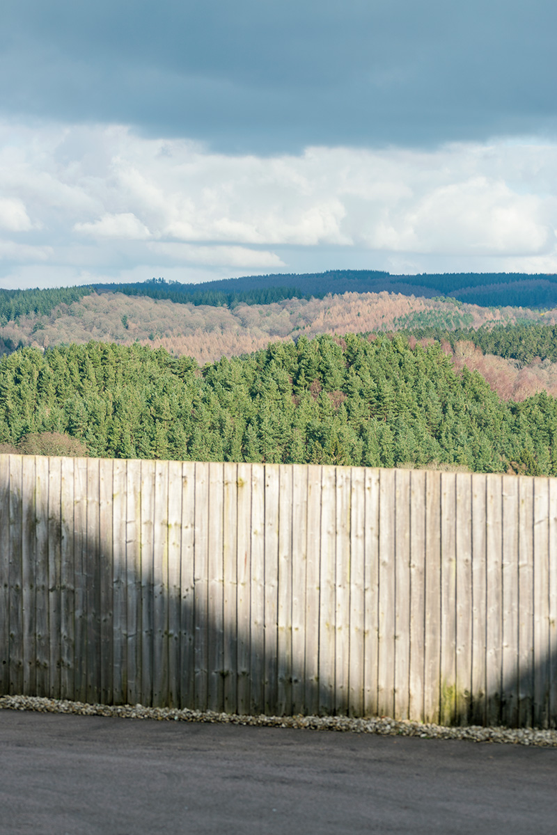 Looking over a residential fence in Bream across the Forest of Dean
