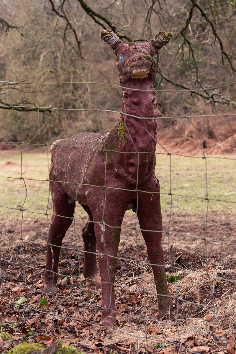 An unusual sculpture of a deer in a field in Bream, Gloucestershire