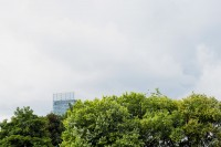 Beetham Tower, seen over treetops in Hulme
