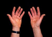 A cabinet maker's hands