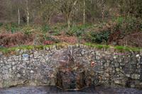 Hayslad spring, West Malvern