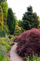The gardens at Fletcher Moss, Didsbury, Manchester